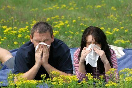 Seasonal Allergy Diagnosis