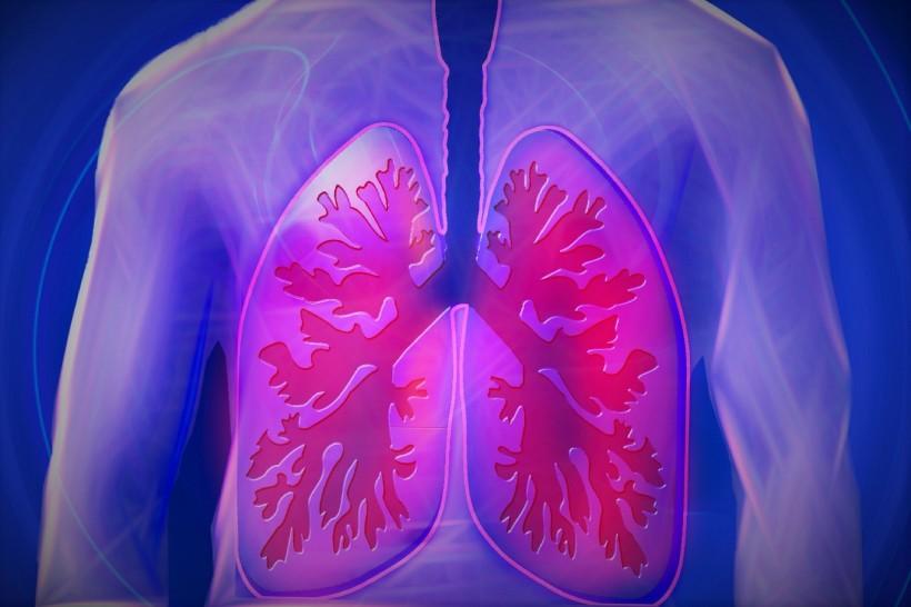 Palliative Care Regimen Options for End-Stage COPD Patients
