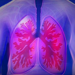 Palliative Care Regimen Options for End-Stage COPD Patients